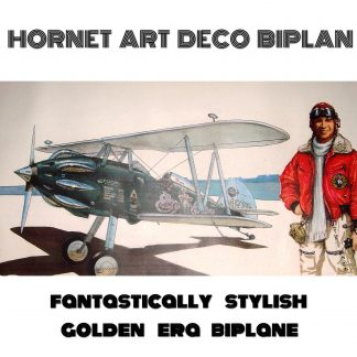 HORNET ART DECO BIPLAN - fantastically stylish golden era biplane